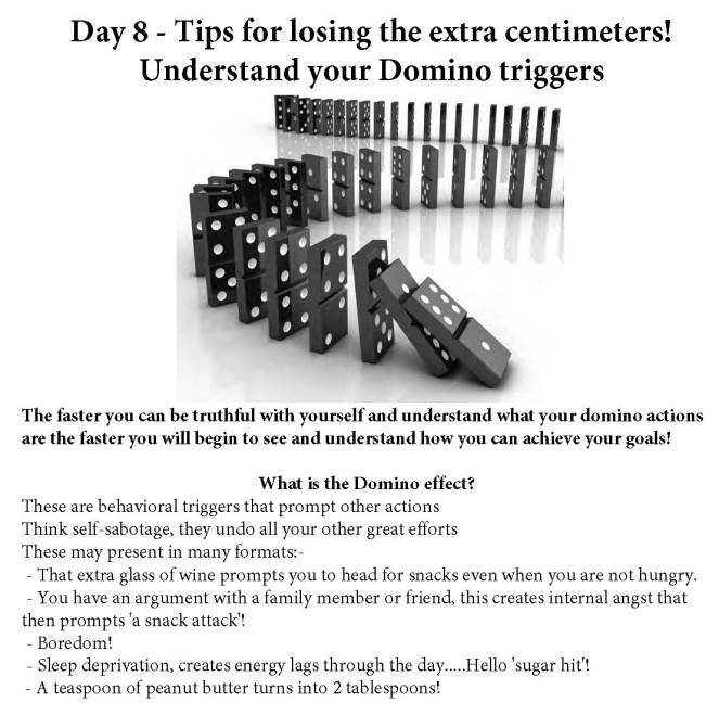 Day 8 Domino Effect